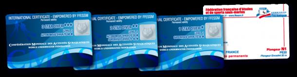 Carte-N1N2N3-CMAS-FFESSM-610x159
